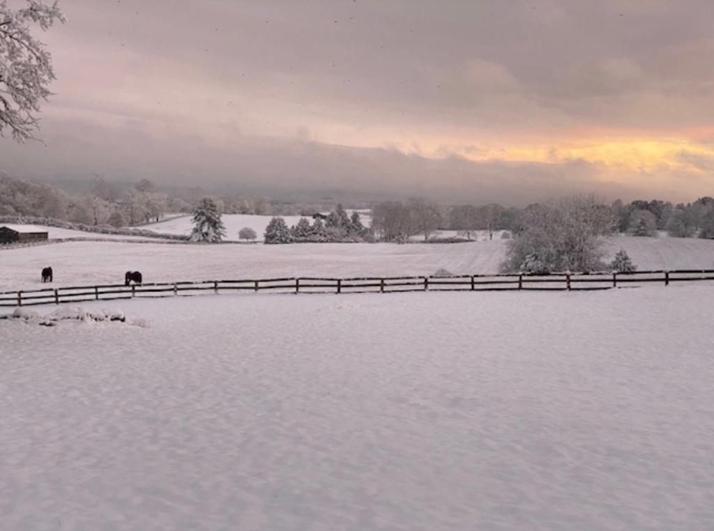 Winter Storm December 2019