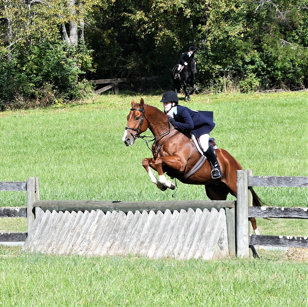 Chatter in the Virginia Field Hunter Championships